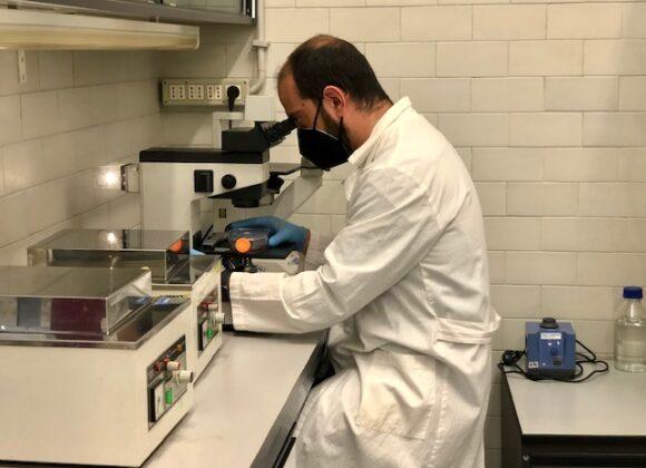 Applicazione clinica della Lattoferrina nella cura dei pazienti affetti da infezione Covid -19. Stato attuale e possibilità di sviluppo